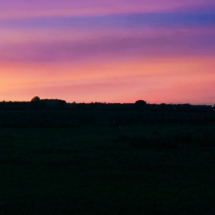 Harbury Fields Sunset